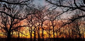 Jeudi 23 Janvier 20h30, conférence : «Pour une spiritualité des temps de la fin», Fontenay-aux-Roses